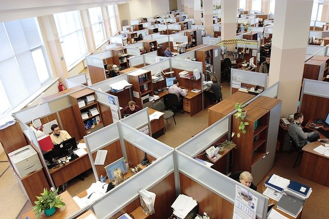 Office space with cubicals