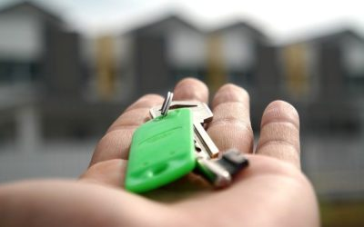 5 Things to Do After Buying a House for Pest Control
